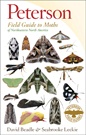 MOTHS OF NORTHEASTERN NORTH AMERICA (PETERSON FIELD GUIDE)