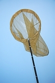 BUTTERFLY NET WITH A TELESCOPIC CARBON STICK
